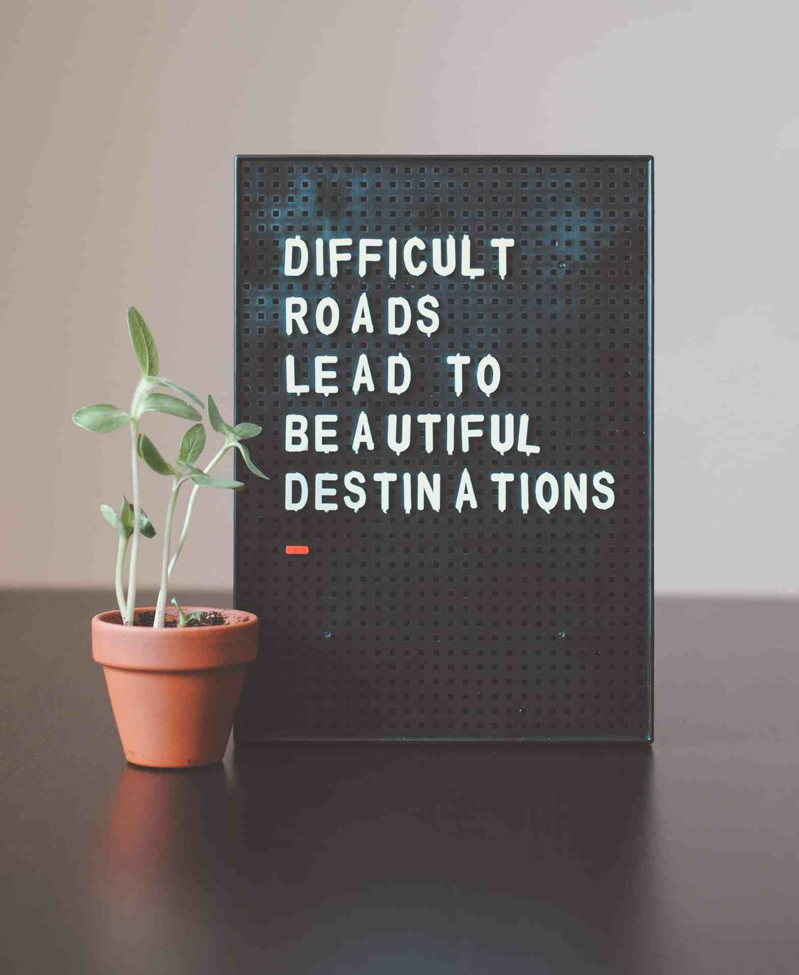 Photograph of plant with black text board with text about difficulty and determination